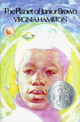 Click for more detail about The Planet of Junior Brown by Virginia Hamilton