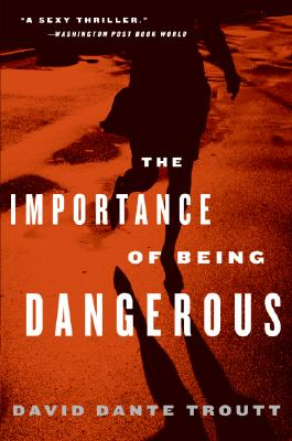 Click for more detail about The Importance of Being Dangerous by David Dante Troutt
