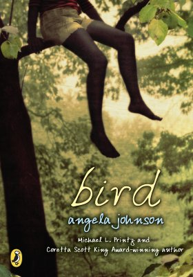 Click for more detail about Bird by Angela Johnson