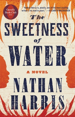 Click for more detail about The Sweetness of Water by Nathan Harris