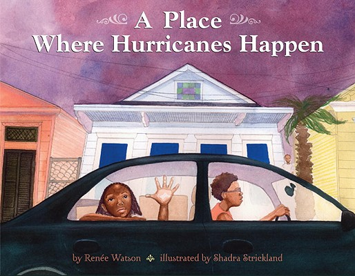 Click for more detail about A Place Where Hurricanes Happen by Howard Zinn