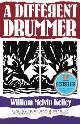 Photo of Go On Girl! Book Club Selection October 2018 – Selection A Different Drummer by William Melvin Kelley