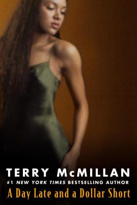 Click for more detail about A Day Late and a Dollar Short by Terry McMillan