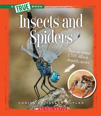 Click for more detail about Insects and Spiders  by Christine Taylor Butler