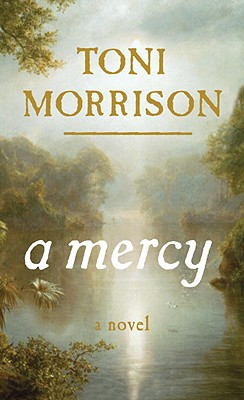Click for more detail about A Mercy by Toni Morrison