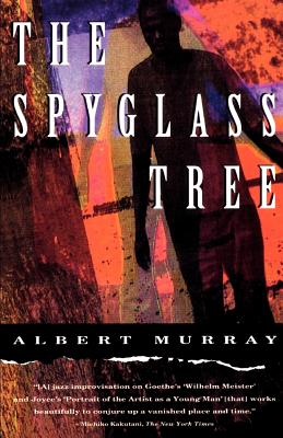 Click for more detail about The Spyglass Tree by Albert Murray