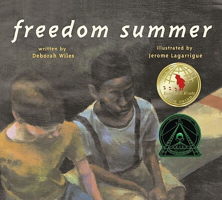 Click for more detail about Freedom Summer by Deborah Wiles