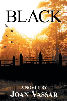 Click for more detail about Black (The Black Series #1) by Joan Vassar