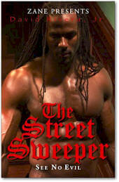 Book Cover The Street Sweeper (See No Evil) by David Rivera