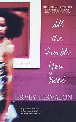 Click for more detail about All The Trouble You Need: A Novel by Jervey Tervalon