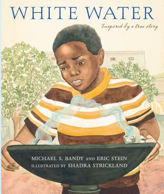 Click for more detail about White Water by Michael S. Bandy and Eric Stein