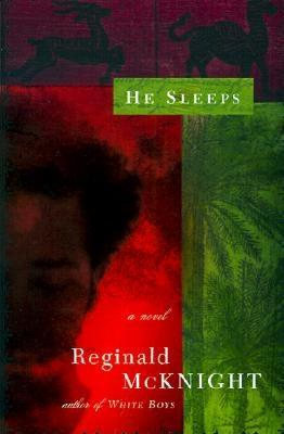 Click for more detail about He Sleeps: A Novel by Reginald McKnight