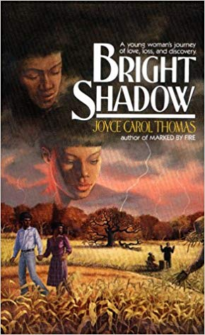 Click for more detail about Bright Shadow by Joyce Carol Thomas