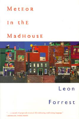 Click for more detail about Meteor in the Madhouse by Leon Forrest