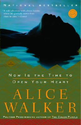 Click for a larger image of Now Is the Time to Open Your Heart: A Novel