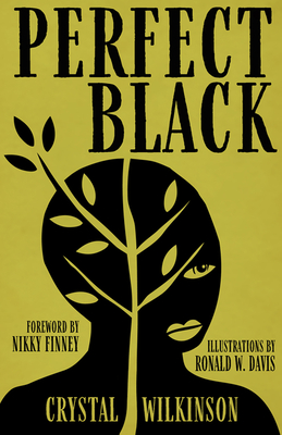 Click for more detail about Perfect Black by Crystal Wilkinson