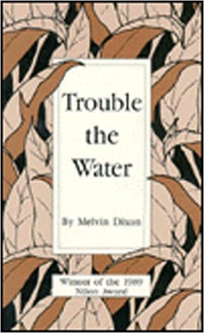 Click for more detail about Trouble the Water by Melvin Dixon