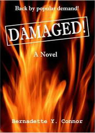Click for more detail about Damaged! by Bernadette Y. Connor