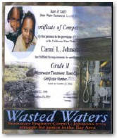 Click for more detail about Wasted Waters by Carmi L. Johnson