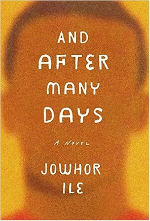Click for more detail about And After Many Days: A Novel by Jowhor Ile