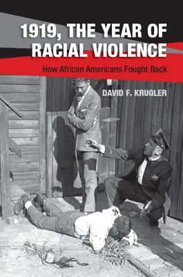 Click for more detail about 1919, The Year of Racial Violence by David F. Krugler