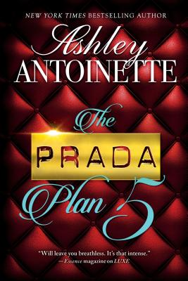 Click for more detail about Prada Plan 5 by Ashley Antoinette