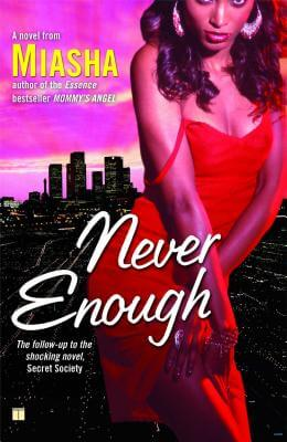 Click for a larger image of Never Enough: A Novel
