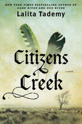 Click for more detail about Citizens Creek: A Novel by Lalita Tademy