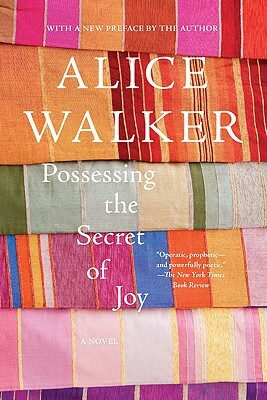 Click for a larger image of Possessing the Secret of Joy: A Novel