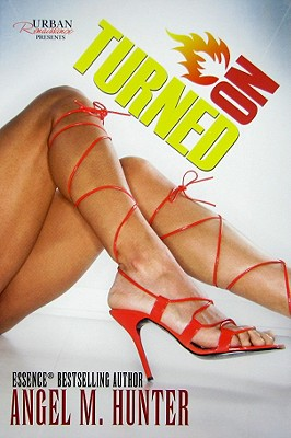 Click for more detail about Turned On: Summer Series (Urban Renaissance) by Angel M. Hunter