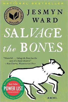 Click for more detail about Salvage the Bones by Jesmyn Ward