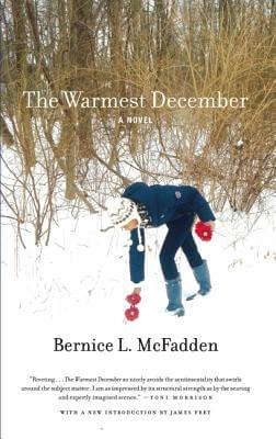 Click for more detail about The Warmest December by Bernice L. McFadden