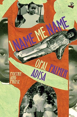 Click for more detail about I Name Me Name by Opal Palmer Adisa