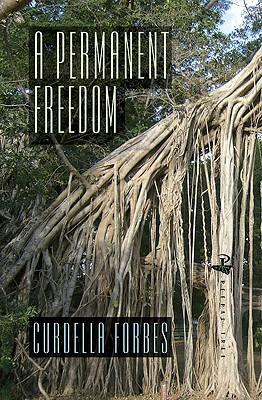 Click for more detail about A Permanent Freedom by Curdella Forbes