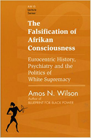 Click for more detail about The Falsification of Afrikan Consciousness: Eurocentric History, Psychiatry and the Politics of White Supremacy by Amos N. Wilson
