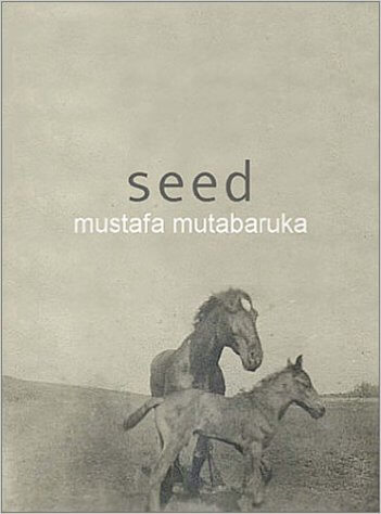 Click for more detail about Seed by Mustafa Mutabaruka