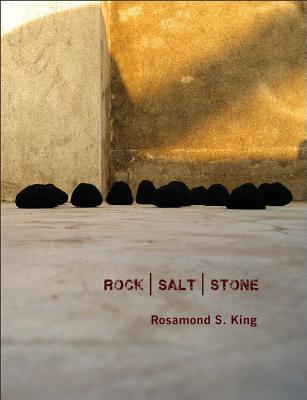 Click for more detail about ROCK | SALT | STONE by Rosamond S. King