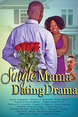 Click for more detail about Single Mama Dating Drama by Cherritta Smith, Denise Anquenette, Patricia A. Bridewell, Trina Charles, Tomeka Farley Daugherty, Princess F.L Gooden, Candice Y Johnson, and 10 others
