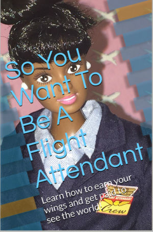 Click for a larger image of So You Want to Be a Flight Attendant: A Memoir