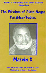 Click for more detail about The Wisdom of Plato Negro: Parables/Fables by Marvin X