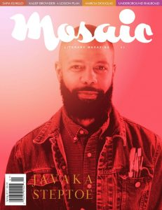 Click for a larger image of Mosaic Literary Magazine Issue #41