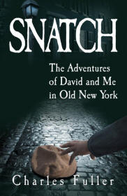 Book Cover Snatch: The Adventures of David and Me in Old New York by Charles Fuller