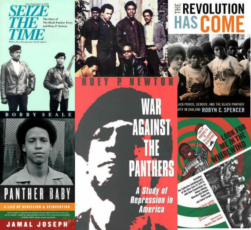 The Top 10 Black Panther Books