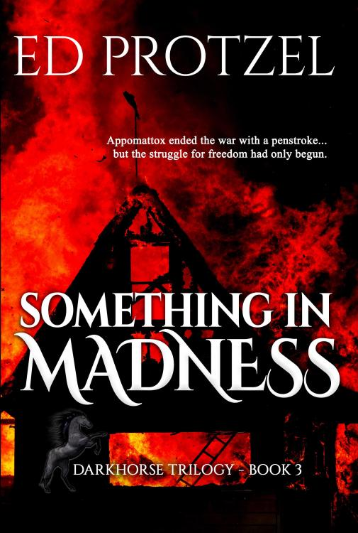 Something in Madness_6x9 paperback front cover copy 2.jpg